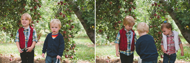 AppleOrchard2013-13