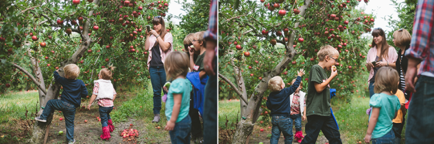 AppleOrchard2013-23