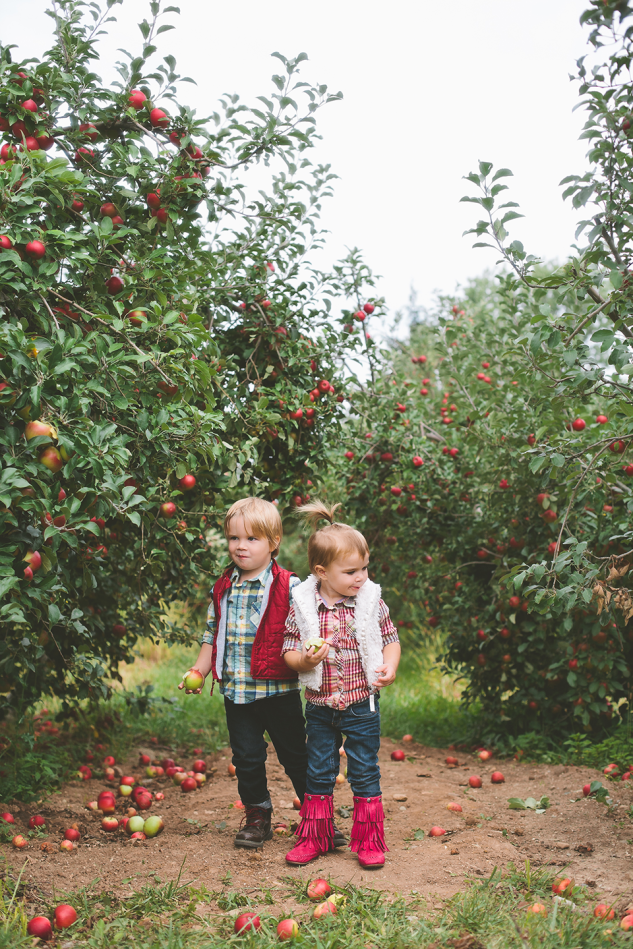 AppleOrchard2013-31