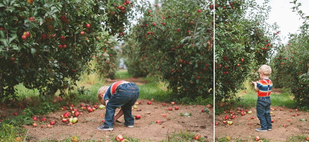 AppleOrchard2013-36