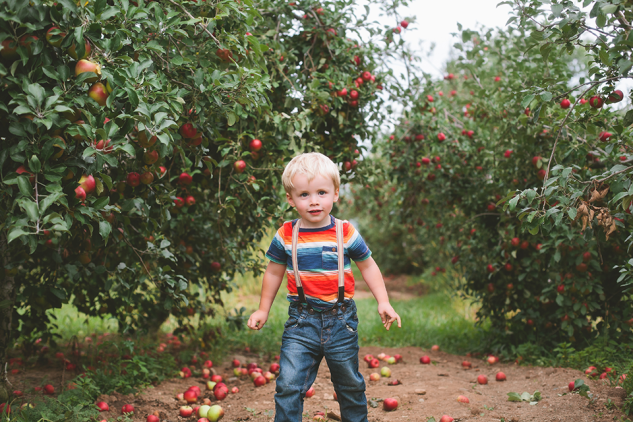 AppleOrchard2013-37