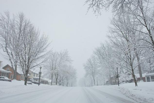 JanuarySnowstorm2014-22
